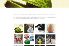 Feed-Webdesign-Gallery