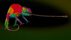 chameleon_w_wire