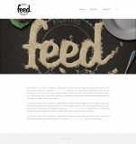 Feed-Webdesign-Home